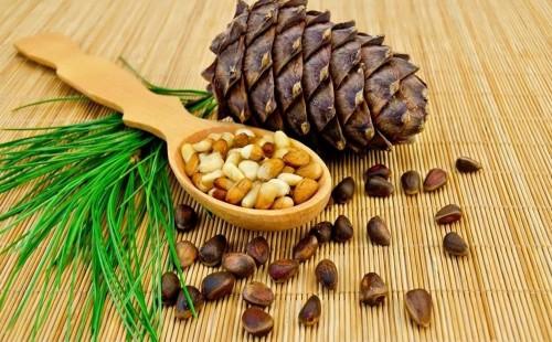 Губернатор Забайкалья поручил помочь в развитии переработки кедрового ореха в Красночикойском районе