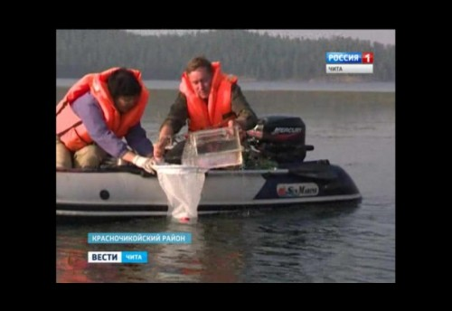 Экспедиция ИПРЭК СО РАН провела исследование высокогорного озера Шебетуй