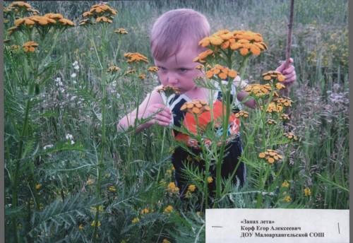 В Красночикойском районе подведены итоги фотоконкурса «Мы растем в Забайкалье»