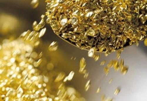 Полицейские задержали жителя Хабаровска, который подозревается в краже промышленного золота на сумму более 10 миллионов рублей в артели в Красночикойском районе Забайкальского края.
