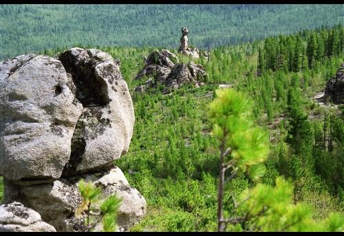 Чикой заповедный Фото Бориса Ветрова